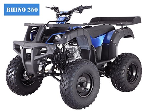 BRAND New Adult Size 250 ATV with standard manual clutch and...